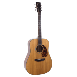 Recording King RD-T16 dreadnought